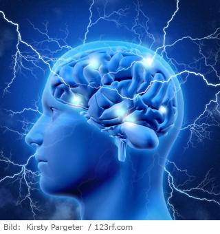 Vortrag: Neurodegenerative Erkrankungen - Wie man das Gehirn mit Mikronährstoffen schützen kann